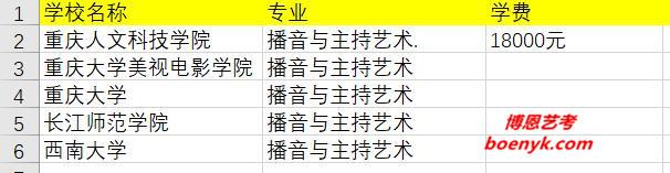 重庆市开设播音主持专业院校大全
