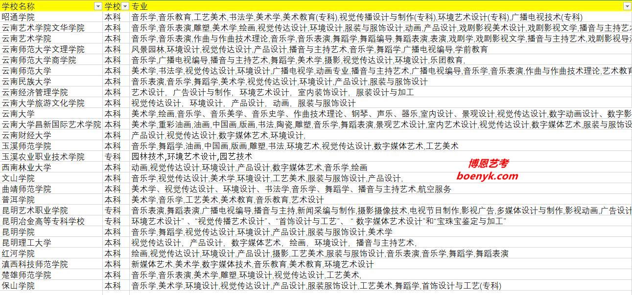 云南省开设艺术类专业院校大全