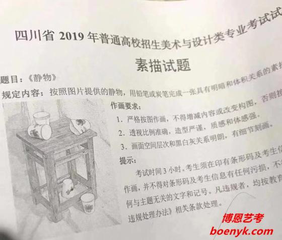 2019年四川美术统考/联考素描题目