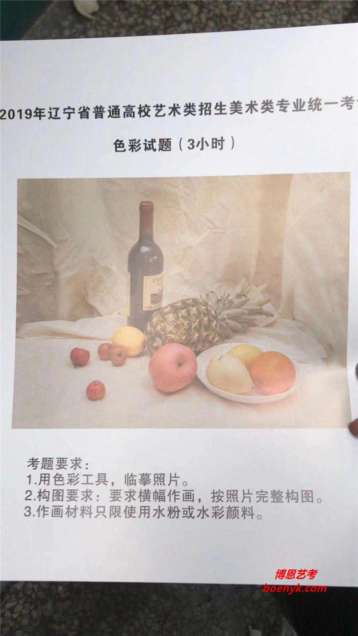 2019年辽宁美术统考/联考色彩考题
