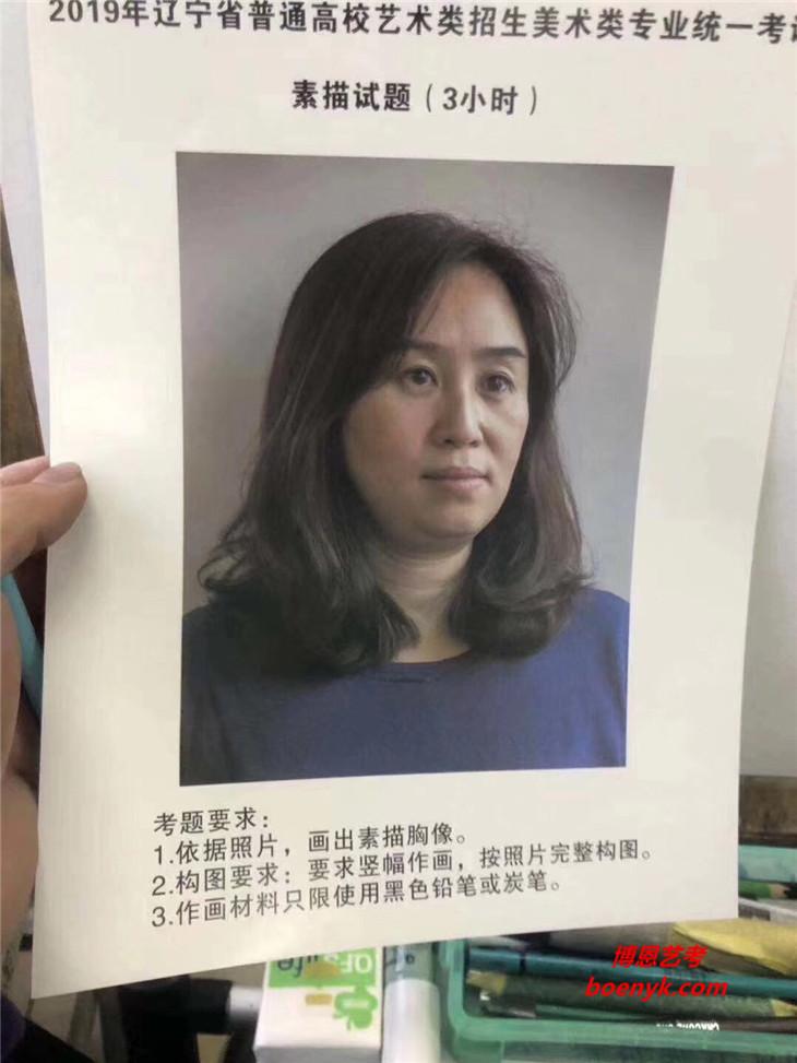 2019年辽宁美术统考/联考素描考题