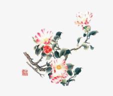 全国开设有中国画专业的院校/学校/大学