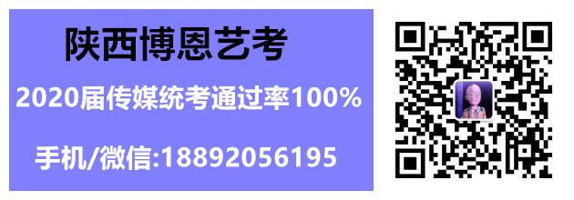 陕西高考编导艺考培训学校/多少钱/哪家好